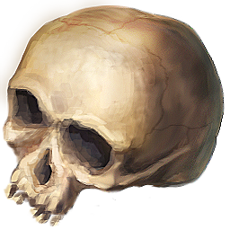 File:Ds item skull.png