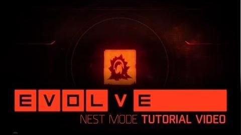Evolve Tutorial Nest