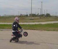 Shamook-bike