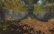 Guild Woods
