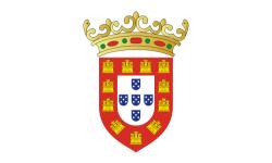 File:PortugueseManuelFlag.png