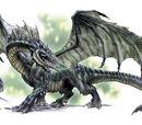 Schwarze Drachen