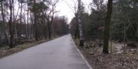 Kronprinzessinnenweg - Königsweg