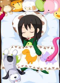 Animal Pajamas Dinosaur w. Sheets set