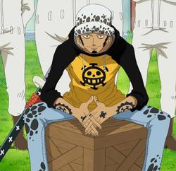Law Trafalgar Anime Pre Timeskip Infobox