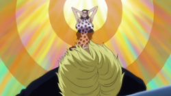 Glare Glare Fruit Anime Infobox