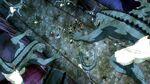 Fairy Tail vs. Lizardmen.JPG