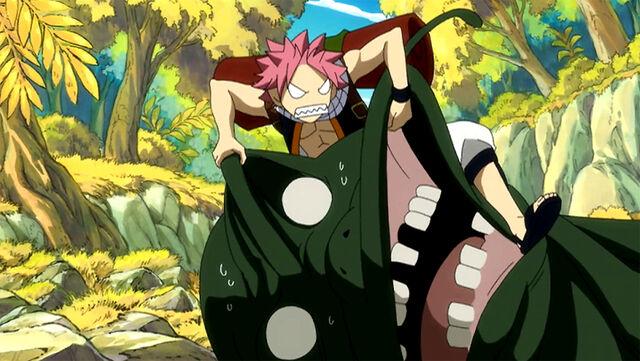 File:Natsu attacking a Kubina Gamaru.jpg