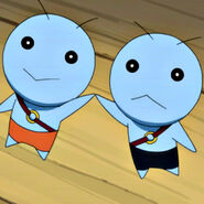Gemini - Close up