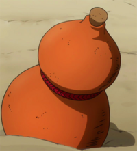 Bacchus' drinking gourd.png