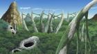 Halen Forest