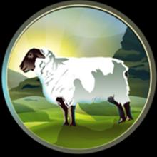 The Holy Sheepism Symbol