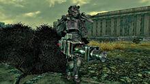 Paladin at the Citadel.jpg