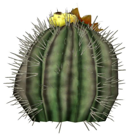 File:Barrel cactus plant.png