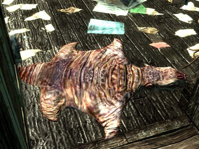 File:Mole rat rug.jpg