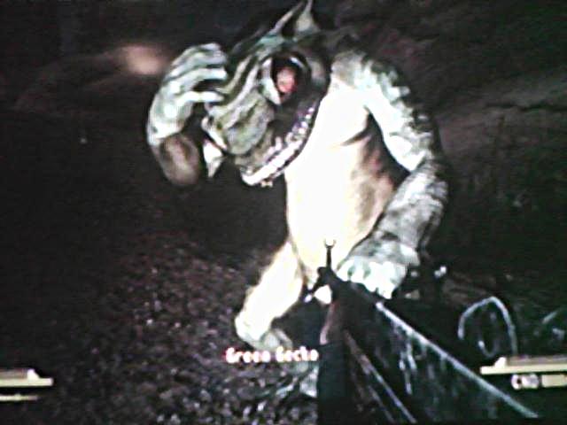 File:Gecko friend 2.jpg