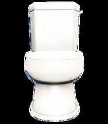 FO4 Toilet Dirty