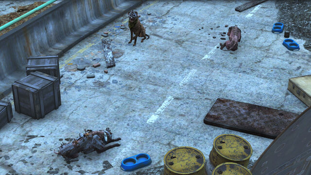 File:FO4 dogs Alissa, Kate and Kyle.jpg