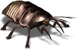 File:VB DD12 creat Cockroach.jpg