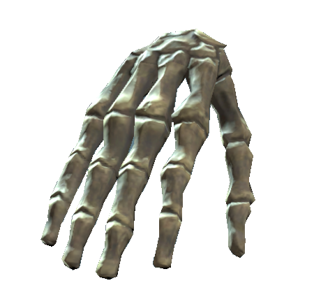 File:Right hand bones.png