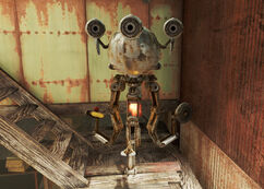 Fo4percyindoors