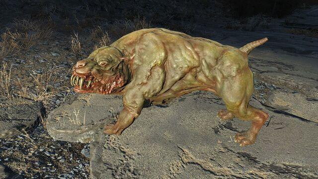 File:FO4 Mutant hound1.jpg