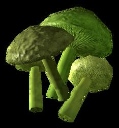 Mutant cave fungus