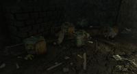 FensStreetSewer-Strollers-Fallout4