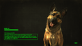 FO4 Loading Screen Dogmeat.png