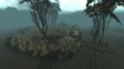 Flooded Sinkhole