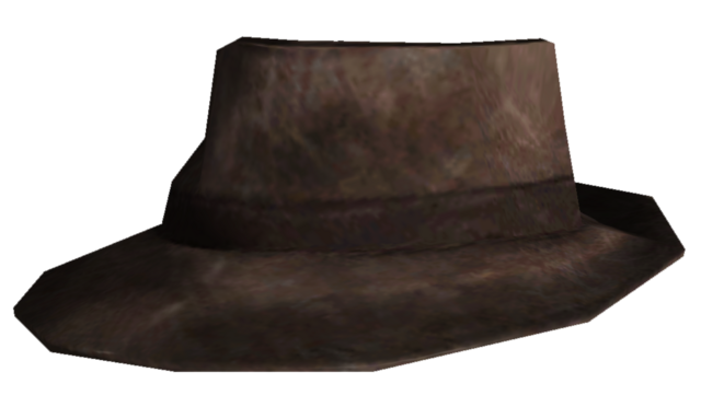 File:Shady Hat.png