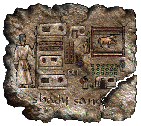 File:Fo1 Shady Sands Townmap.png
