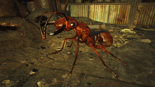 File:Fo4NW Soldier ant.png