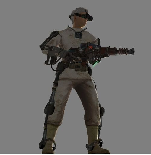 Nuka-Rifle