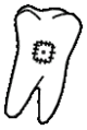 Icon FO3PL tooth.png