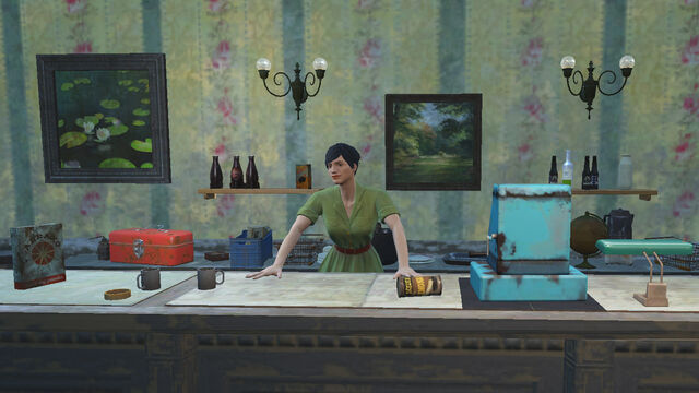 File:Penny behind counter.jpg