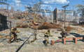 Fo4 rotten landfill super mutants and prisoner.png
