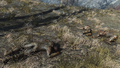 Fo4 Three dead raiders.png