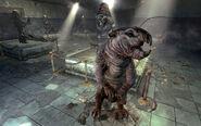 Big mole rat in the RobCo Facility