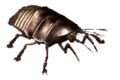 VB DD12 creat Cockroach.png