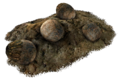 Deathclaw eggs.png