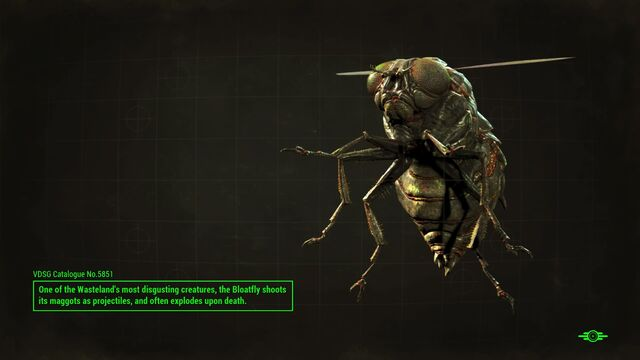 File:FO4 Bloatfly loading screen.jpg