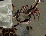 KillGiantRadscorpion