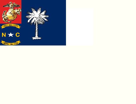 File:Acta's flag.png