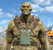 Fo4supermutantharness