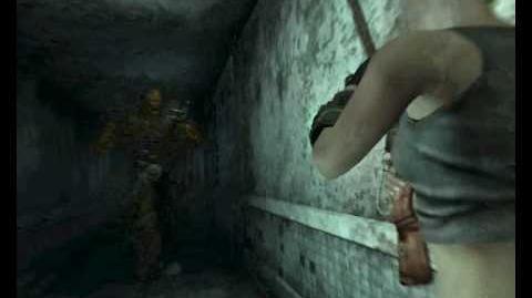 Fallout 3 BB GUN