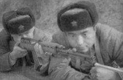 Type 6 rifle