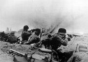 German troops Syria