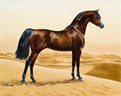 Brown horse in desert