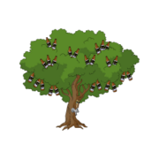 Decoration beerbottletrees